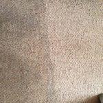professional carpet cleaning-Warsash-Park Gate-Locks Heath-Whiteley-Fareham-Portsmouth-Southampton