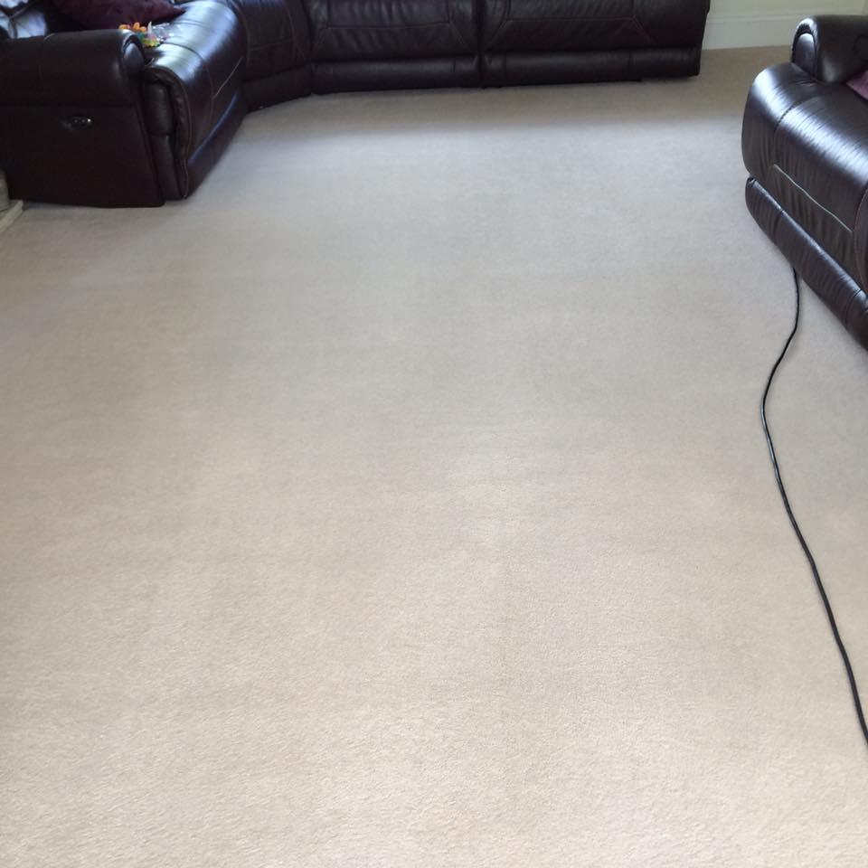 Gallery Bright Carpets