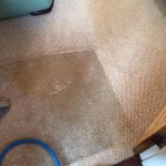 professional carpet cleaning-Warsash-Park Gate-Locks Heath-Whiteley-Fareham-Portsmouth-Southampton